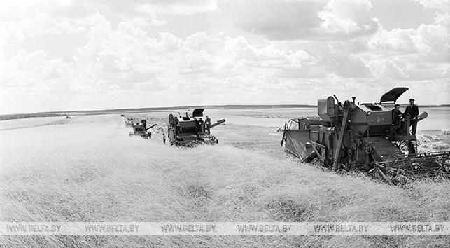 Березовская ГРЭС. 1962 год