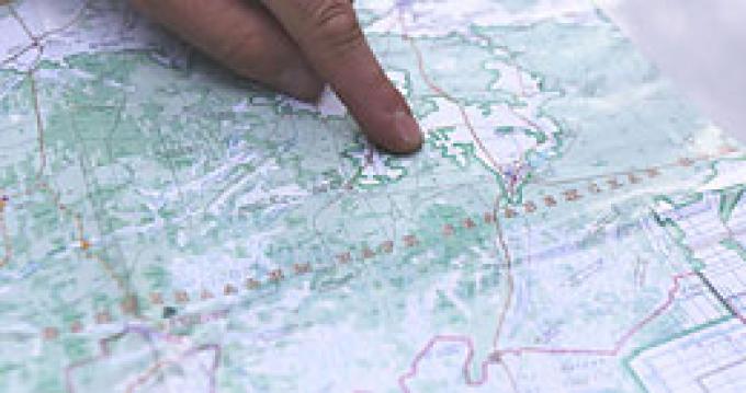 Поиски пропавшего мальчика в Беловежской пуще