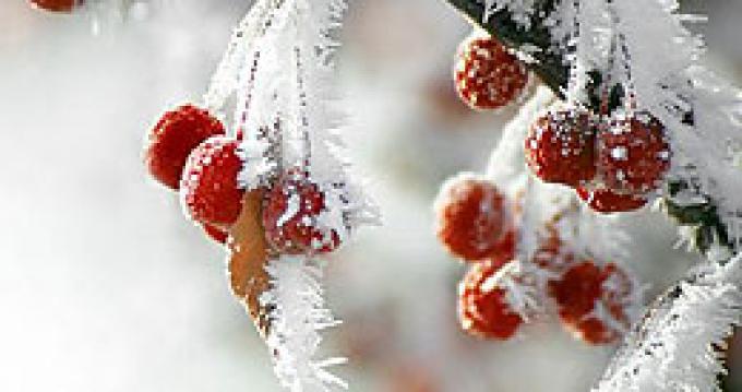 Морозы в Беларуси