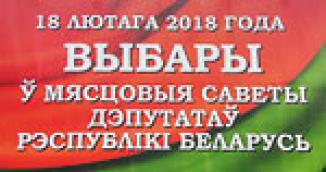 Выборы депутатов в местные Советы