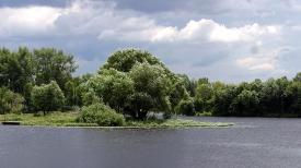 На реке Мухавец