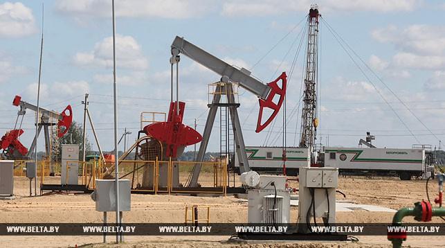 """Самое крупное месторождение нефти - Речицкое, где добывается более 30 т """"черного золота"""" в сутки. Фото из архива"""
