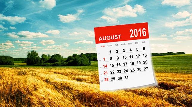 Изменения с августа в Беларуси. Мы будем жить теперь по-новому?