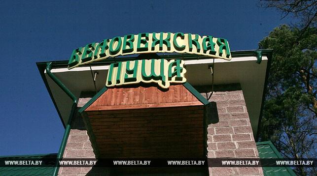 Туристы из 28 стран посетили Беловежскую пущу по безвизовому режиму