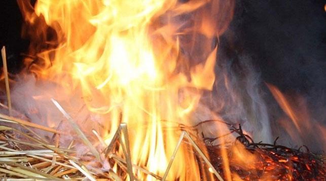 Дошкольник поджег сеновал в Пружанском районе