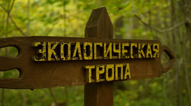 Фото Березинского биосферного заповедника