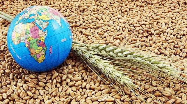 Беларусь и ФАО планируют сотрудничать в сфере научных исследований ...