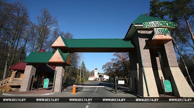 Диплом Совета Европы может быть продлен для Беловежской пущи на 10 лет