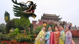 Фестиваль хризантем в Китае
