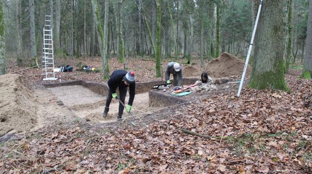 В Беловежской пуще обнаружены кремневые артефакты каменного века