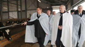 Александр Лукашенко во время посещения молочно-товарного комплекса