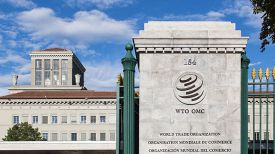 Фото ВТО