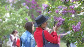В Ботаническом саду Минска. Фото из архива