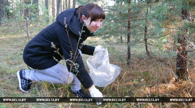 Акция «Чистый лес» пройдет в Брестской области 19 октября