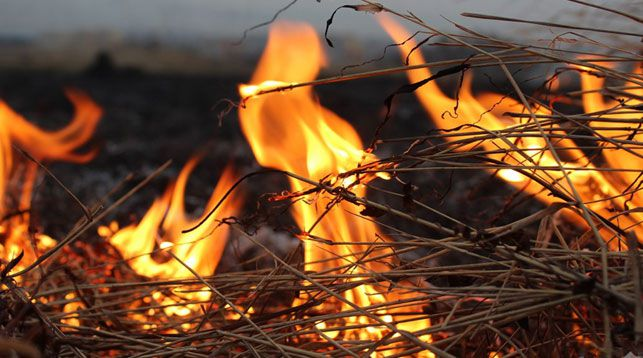 В Столинском районе от удара молнии сгорело почти 150 т сена