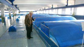 "Программа ""Чистая вода"". Фото из архива"