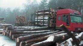 Фото Государственной инспекции охраны животного и растительного мира при Президенте Беларуси