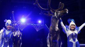 Фото из Vk-аккаунта Бриллиантовый цирк России Тепло Вечной Мерзлоты