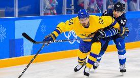 Во время матча Швеция - Финляндия. Фото IIHF