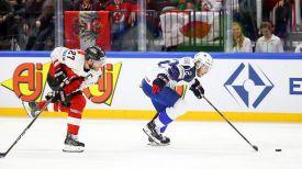 Во время матча Франция - Австрия. Фото IIHF