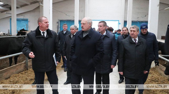 """Александр Лукашенко во время посещения молочно-товарного комплекса """"Слижи"""""""