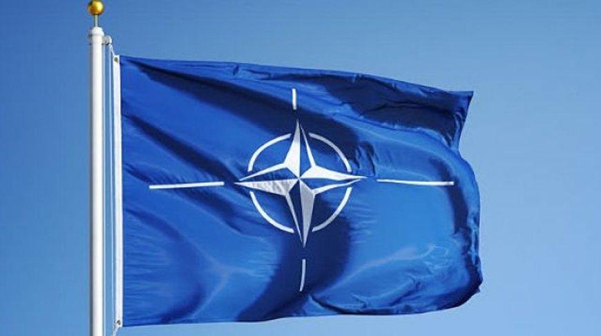 Беларусь и НАТО обсудили актуальные вопросы взаимодействия