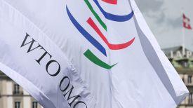 Фото WTO