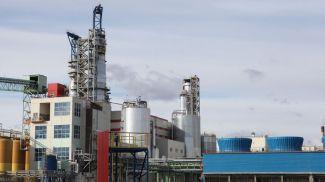 Завод по производству сульфатной беленой целлюлозы. Фото из архива