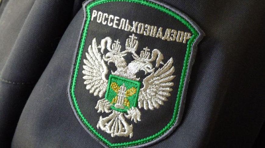 Фото rsn.tomsk.ru
