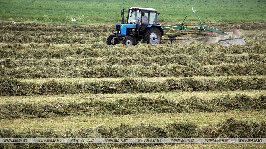 Травы второго укоса убраны в Брестской, Гомельской и Минской областях