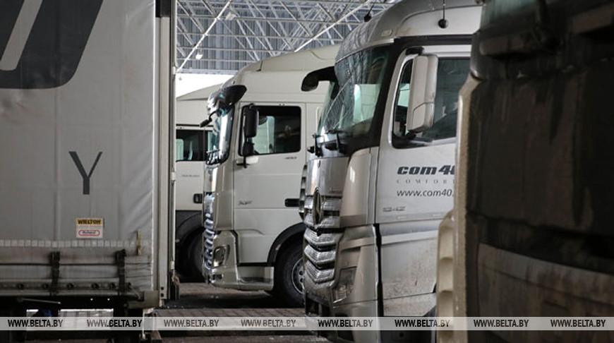 Беларусь ввела временный запрет на вывоз необработанных шкур КРС за пределы ЕАЭС