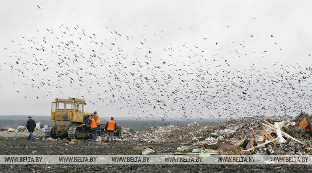 Полигон твердых бытовых отходов. Фото из архива