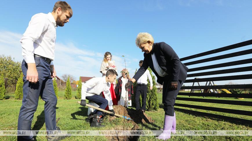 Ирина Костевич сажает яблоню с семьей Цукановых