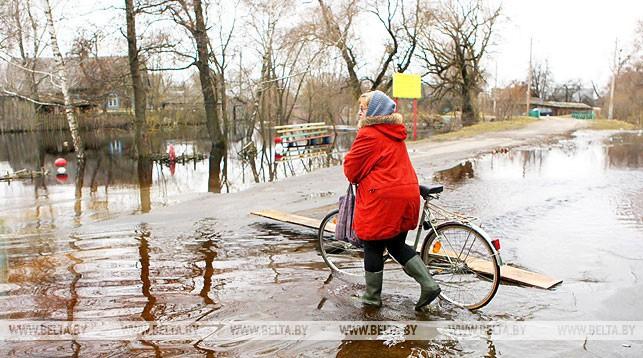 Паводок в Брестской области ожидают ниже средней интенсивности