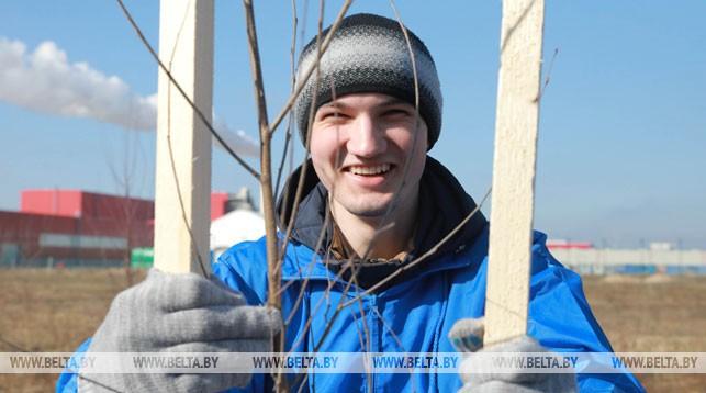 Михаил Шкумаев во время высадки деревьев