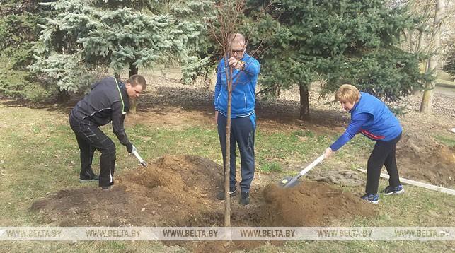 Олег Слижевский (слева) во время высадки деревьев