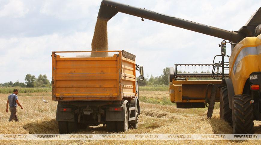 Во время уборки зерновых. Фото из архива