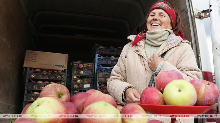 Сезон сельхозярмарок начинается в Бресте 28 сентября