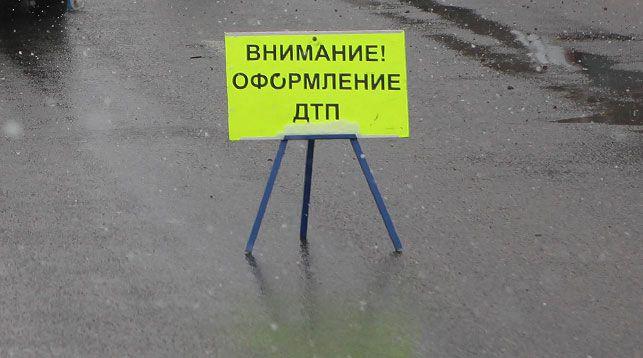 В Березовском районе легковушка вылетела в кювет после столкновения с лосем
