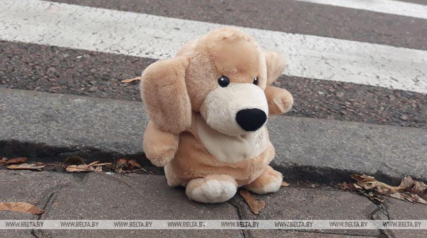 Автомобиль сбил 8-летнюю девочку в Ивацевичском районе