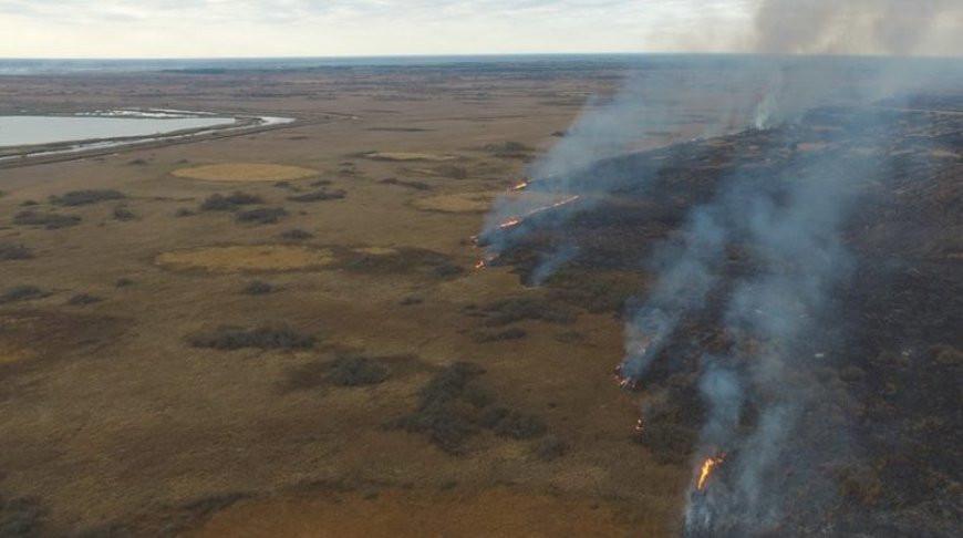 Спасатели ликвидируют пожар на болоте в Пинском районе