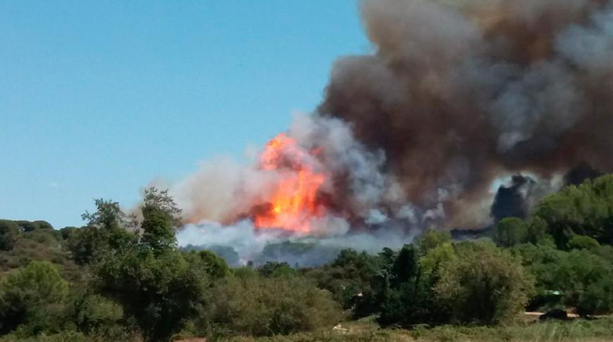 Фото из Тwitter-аккаунта пожарно-спасательной службы Франции