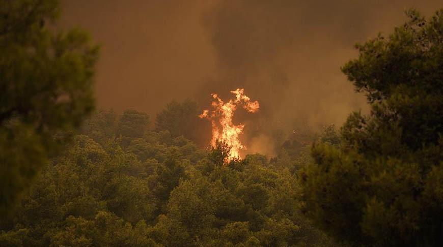 Новости дня: В Греции экстренно эвакуируют туристов Пожар на АС 31, последние новости.