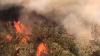 Скриншот из видео с Twitter-аккаунта пожарной службы региона