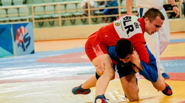 Фото Всероссийской федерации самбо