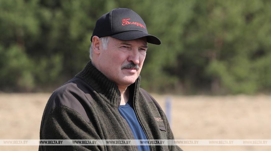 Лукашенко в субботник будет работать на посадке деревьев в Петриковском районе