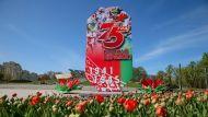 """""""Они умирали ради нас"""" - Лукашенко о важности проведения парада в День Победы"""