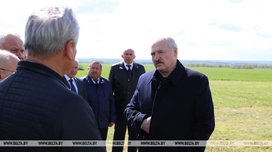 Лукашенко отмечает позитивные изменения в хозяйствовании на земле Витебской области