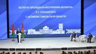 Лукашенко поручил выработать отдельную программу развития сельского хозяйства в Гомельской области