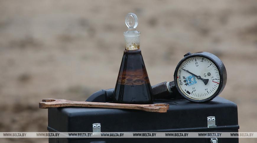 Беларусь рассчитывает получить в апреле 2 млн т нефти по цене около $4 за баррель